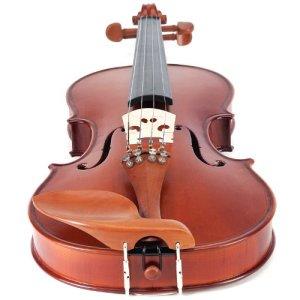 Cecilio CVN-400 violin